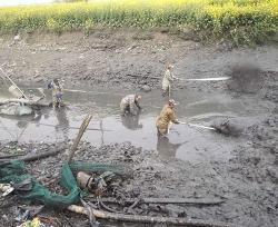 河道清淤工程